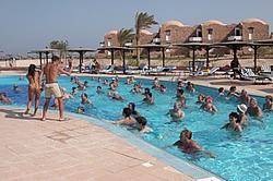 <a href='/egypt/hotels/akassiaswiss/'>Akassia Swiss</a> 4*