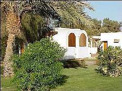 Coralia Club <a href='/egypt/hotels/novotelluxor/'>Novotel</a> 4*