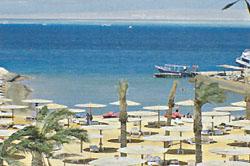 <a href='/egypt/hotels/seastar /'>Sea Star</a> 4*