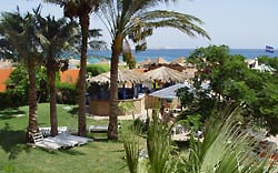 <a href='/egypt/hotels/coralcoast/'>Coral Coast</a> 3*