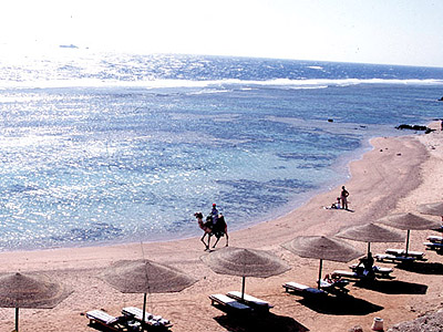 <a href='/egypt/hotels/noria/'>Noria Resort</a> 4*
